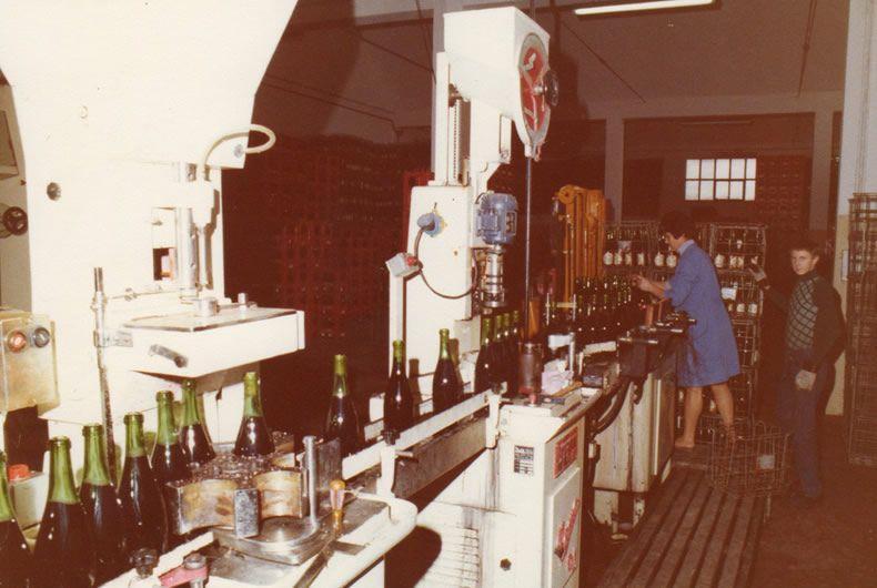 la cantina valtidone, immagine repertorio, produzione vino