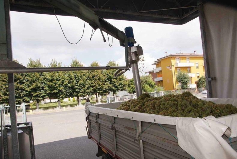 pigiatura dell'uva con attrezzo meccanico
