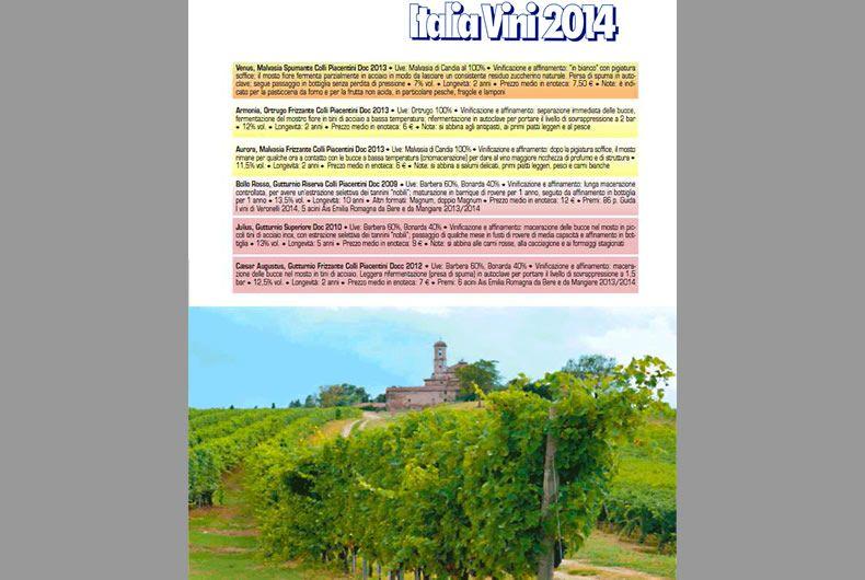 riconoscimento italia vini 2014, citazione vini cantina
