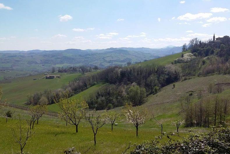 campi e dolci colline valtidone