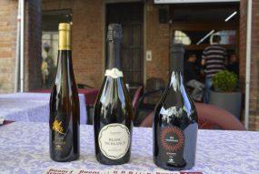 Foto Di Gruppo Delle Bottiglie Luna Di Candia, Blanc De Blancs, 50 Vendemmie Gutturnio Frizzante