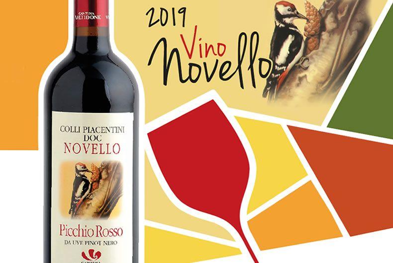 Picchio Rosso, il vino novello fa festa nel fine settimana in Cantina Valtidone