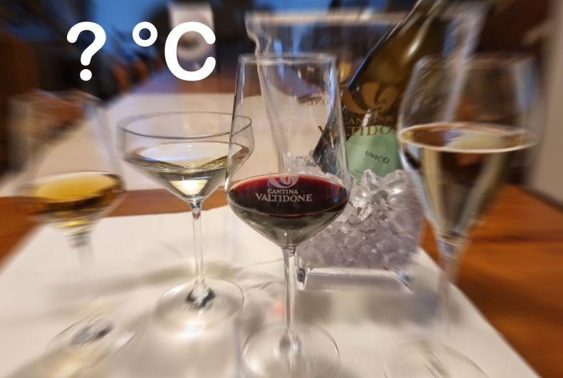 La Temperatura Ideale Di Servizio Di Un Vino